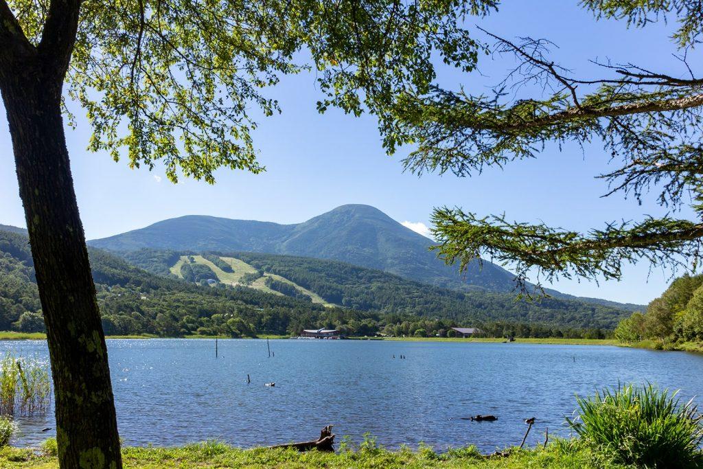 世界的なリゾート地:女神湖畔で本格的MTBを楽しむレンタルサイクルサービス:MEGAチャリ