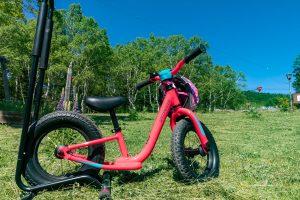 幼児向けのペダルのないタイプの自転車Hotwalk